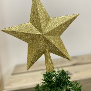 Sparkle Star Tree Topper Gold 8858